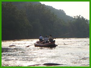 French broad river information from asheville fishing for French broad river fishing